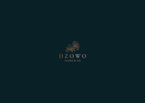 Dzowo Corporate Identity adn Backaging 01