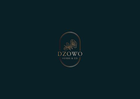 Dzowo Corporate Identity adn Backaging 02