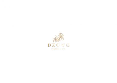 Dzowo Corporate Identity adn Backaging 03