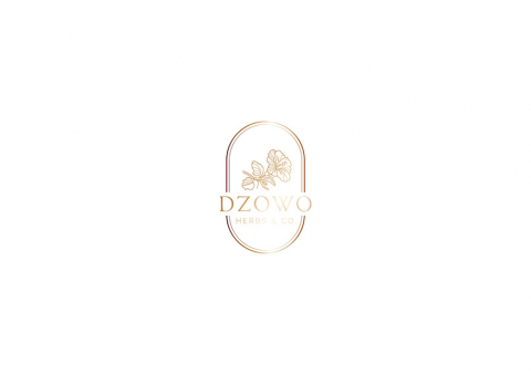 Dzowo Corporate Identity adn Backaging 04