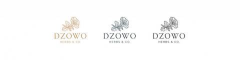 Dzowo Corporate Identity adn Backaging 09